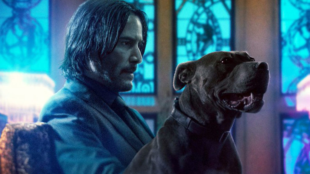 Download John Wick: Chapter 3 Bluray Free